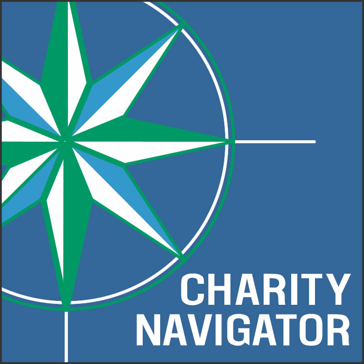 Use Charity Navigator to get clear informations